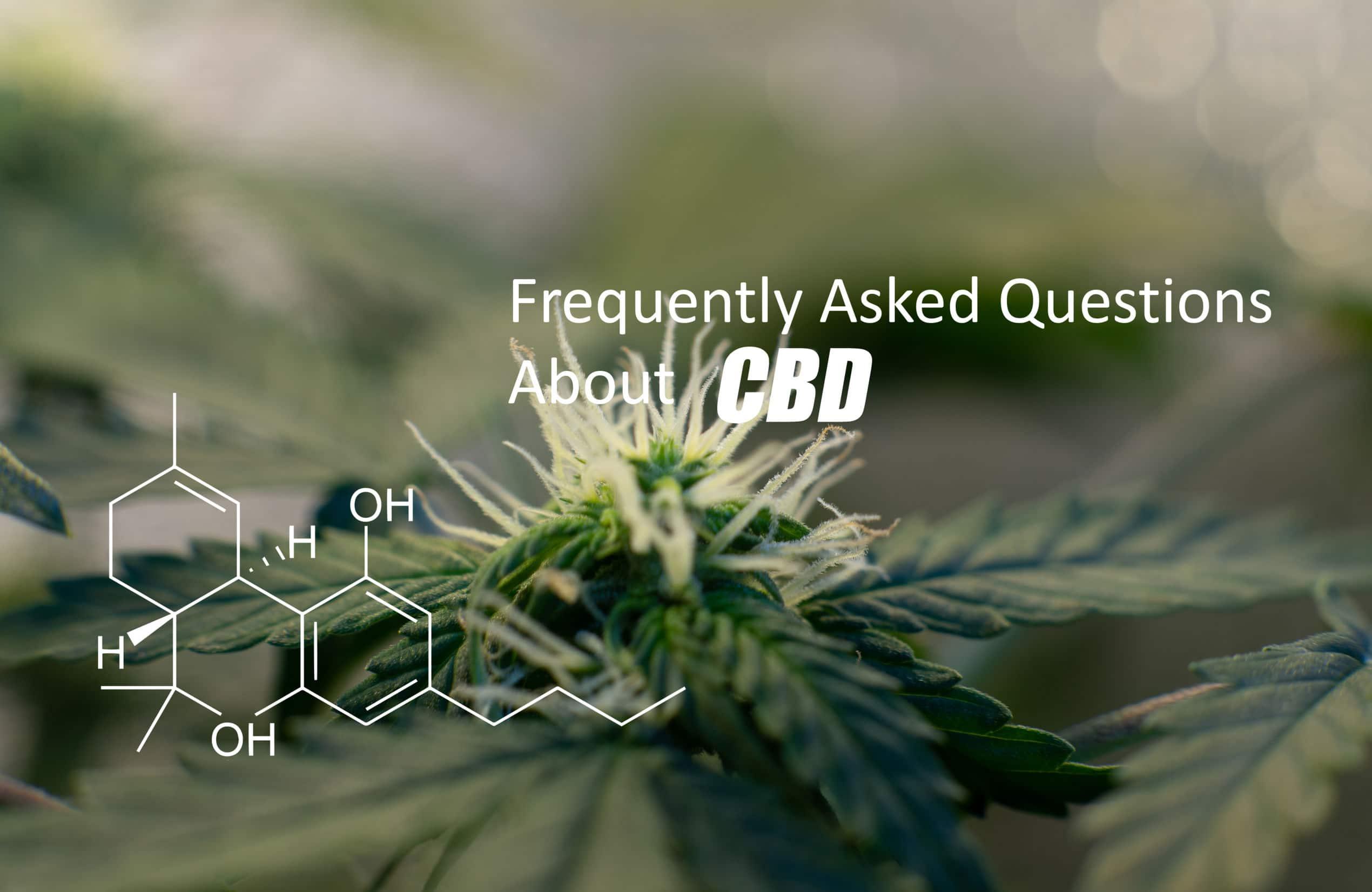 cbd คืออะไร